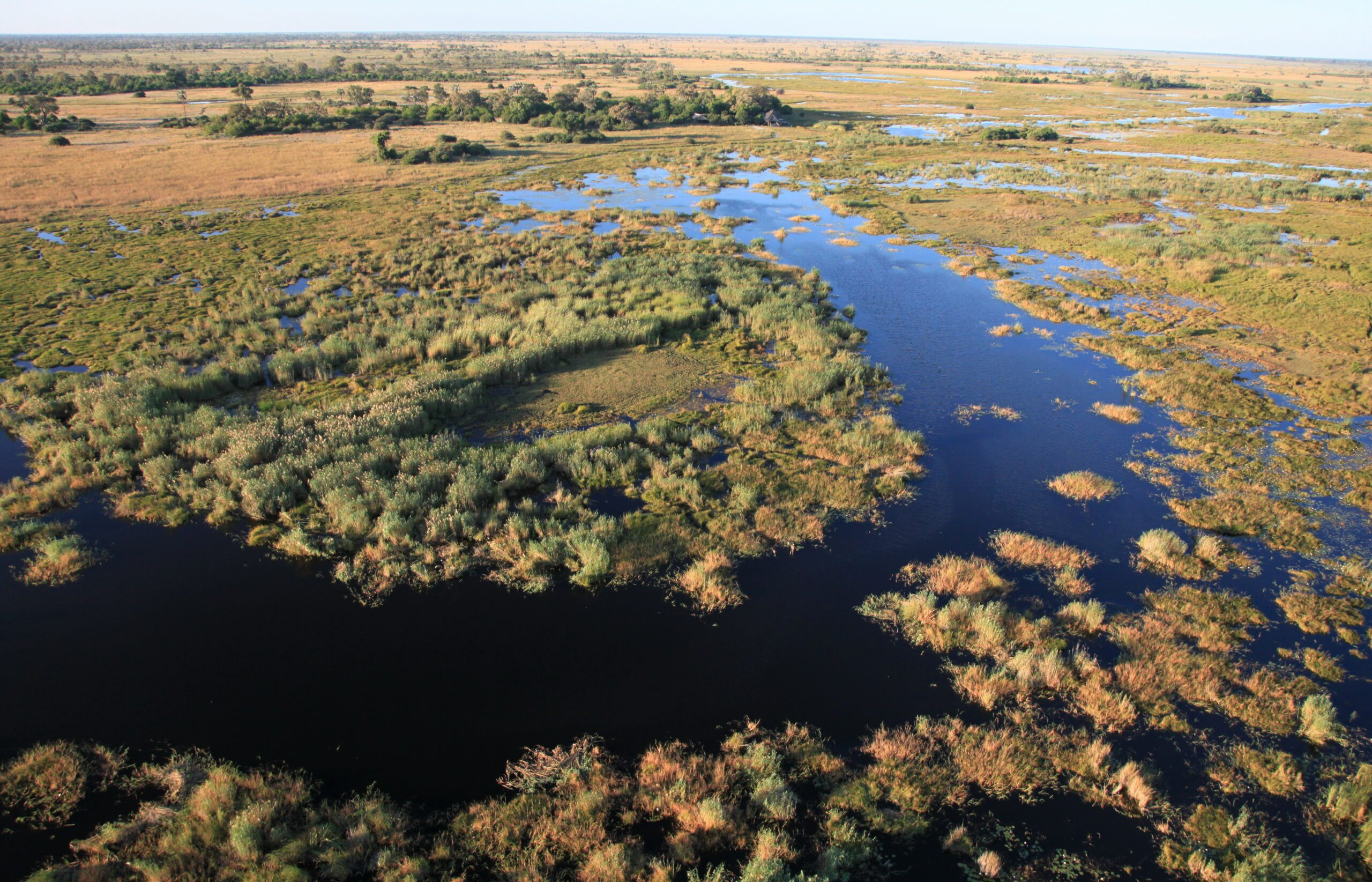 meandering selinda spillway surrounded by reeds and small islands