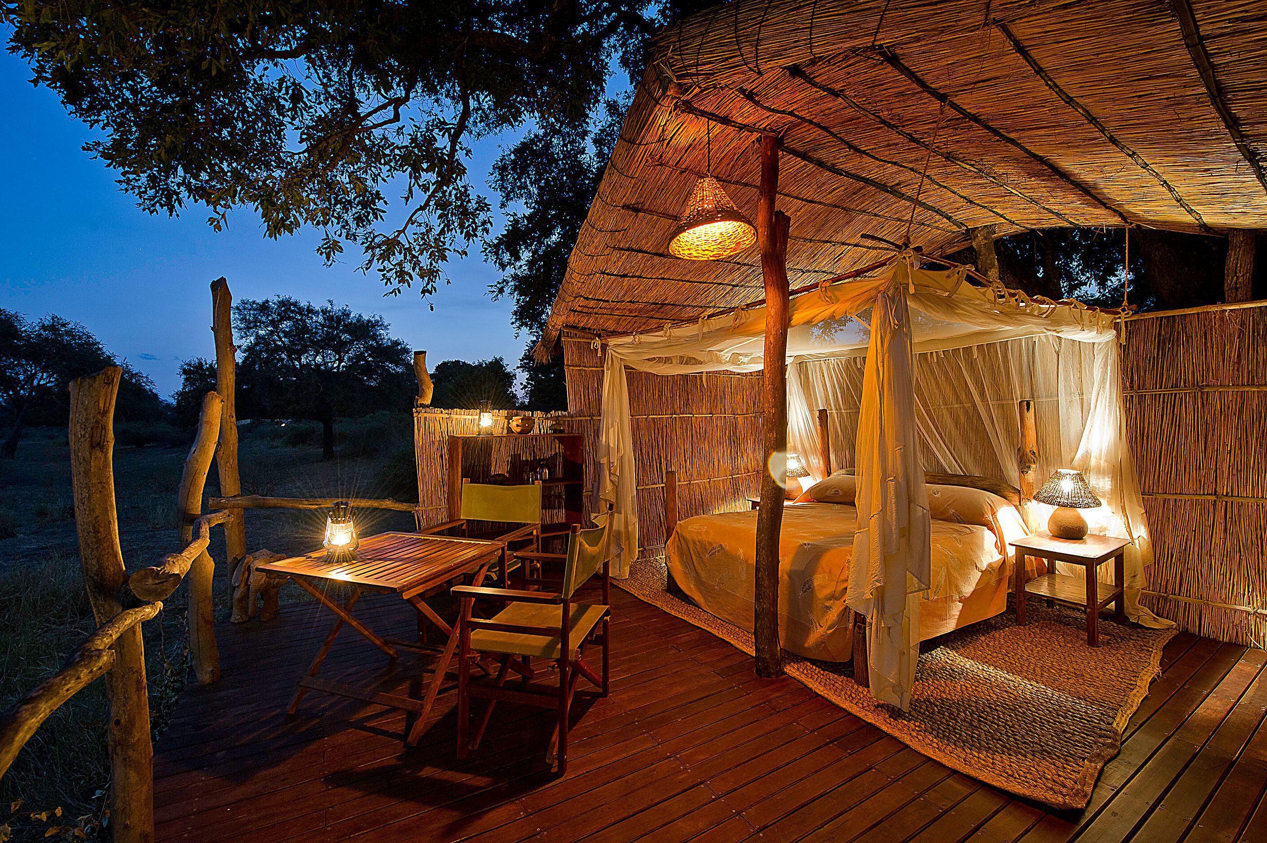 treehouses on safari at flatdogs camp