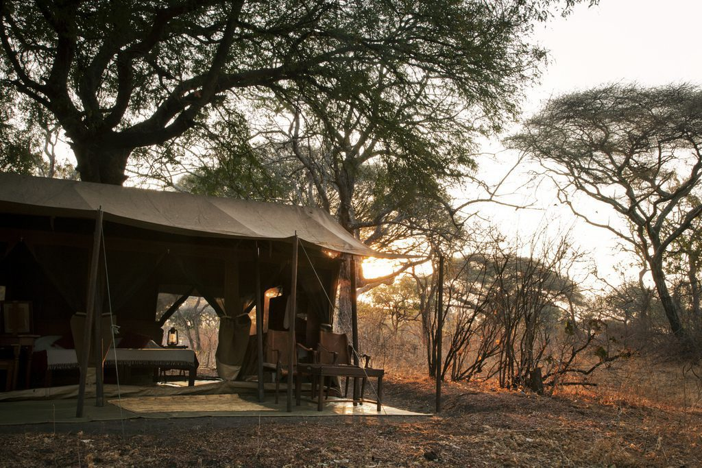 open air canvas tent under a grove of trees at dusk
