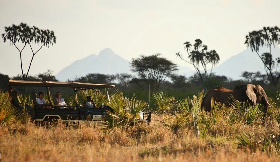 kenya safari vehicle in the bush with mountain in the background