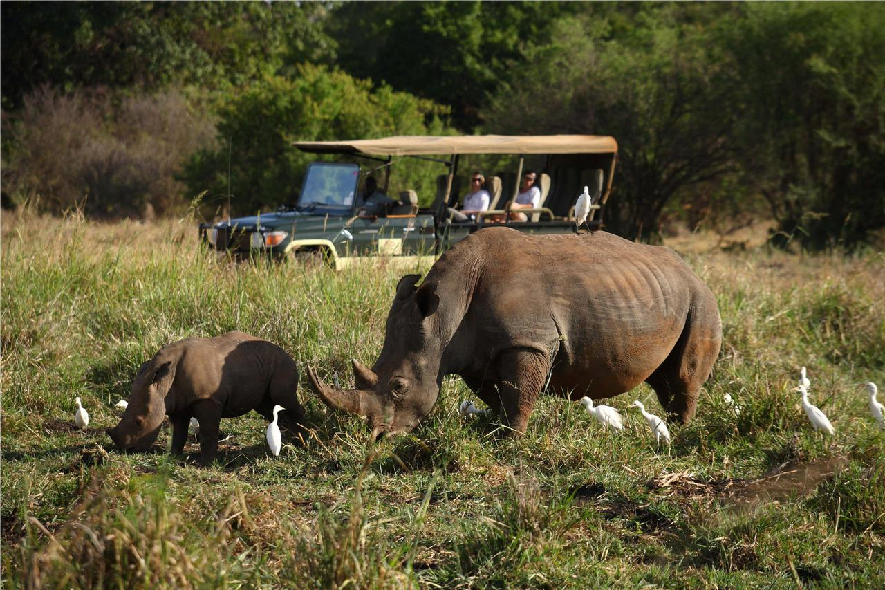 covered game vehicle stopping to view rhinos on a game drive at Elsa's Kopje