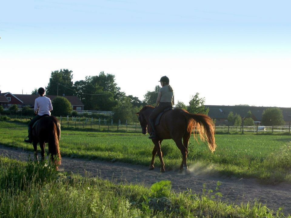 2 guests horseback riding on the trail in the cape winelands with green grass beside them at Franschhoek country house