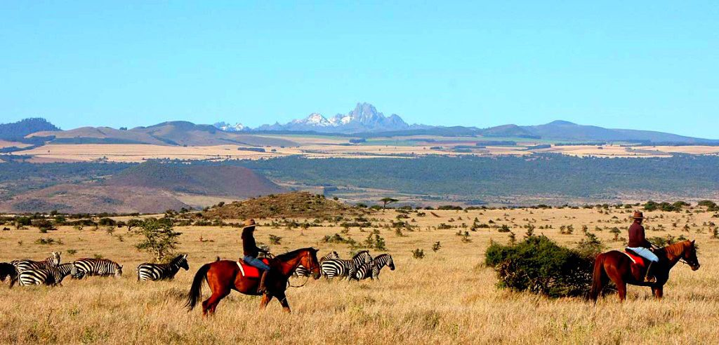 lone horseback rider crossing an open field of golden grass with Mt. Kenya in the background