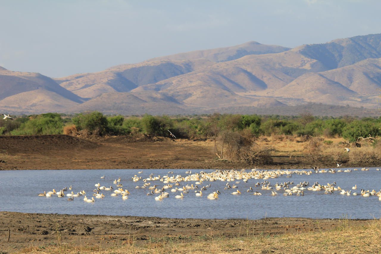 Lake at Manyara Ranch