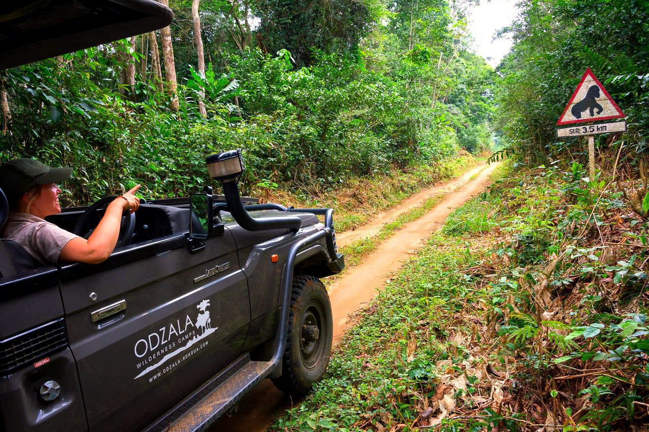 Ngaga Camp Odzala vehicle on dirt rainforest road republic of the congo safari