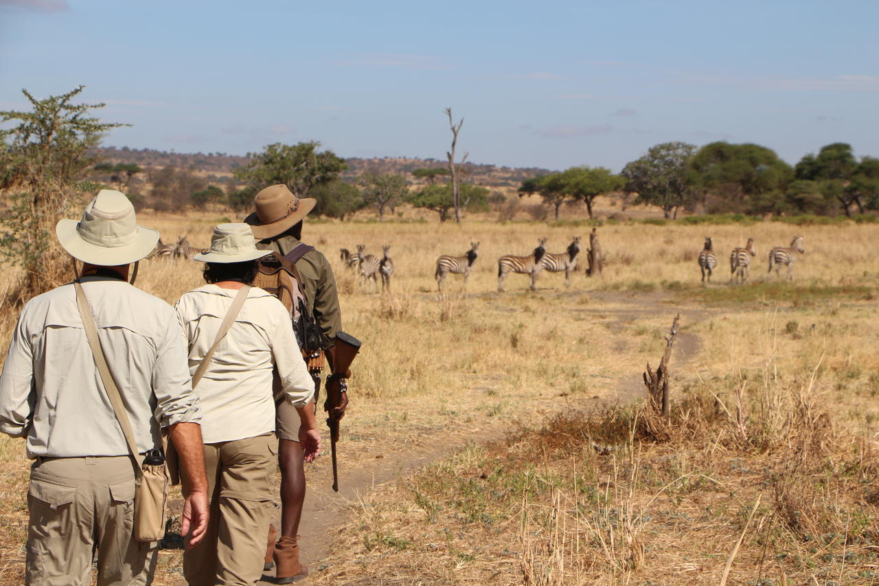 two guests walking in a line behind their armed ranger with animals in the distance