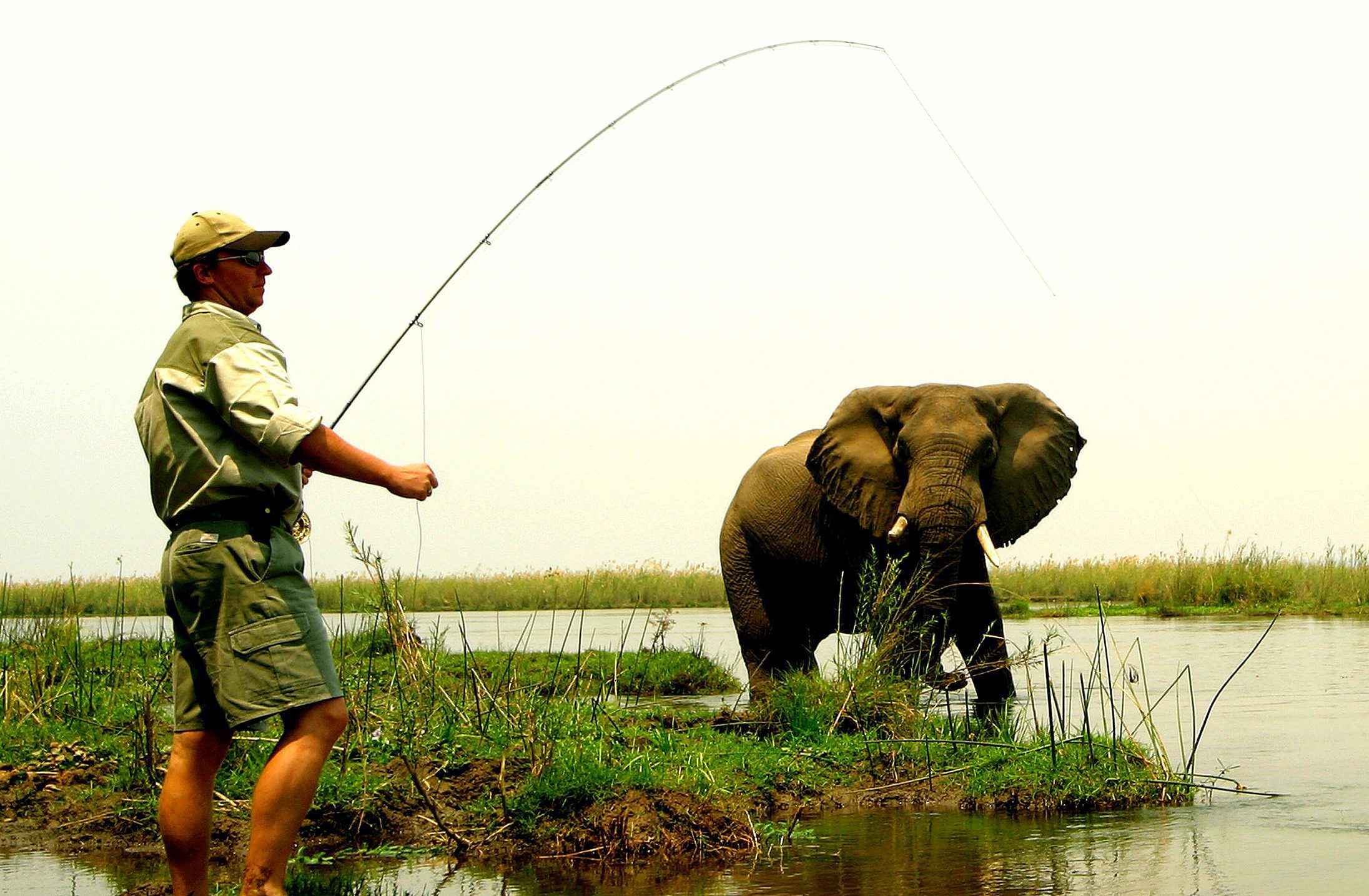 a man is holding a fishing pole while an elephant walks behind him