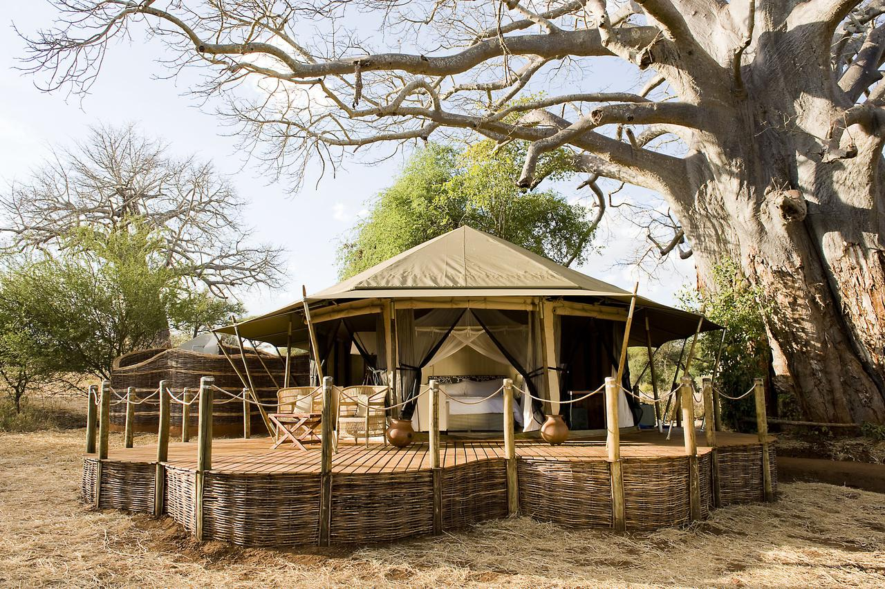 spacious tented room with canvas open and built on a wooden deck under a baobab tree