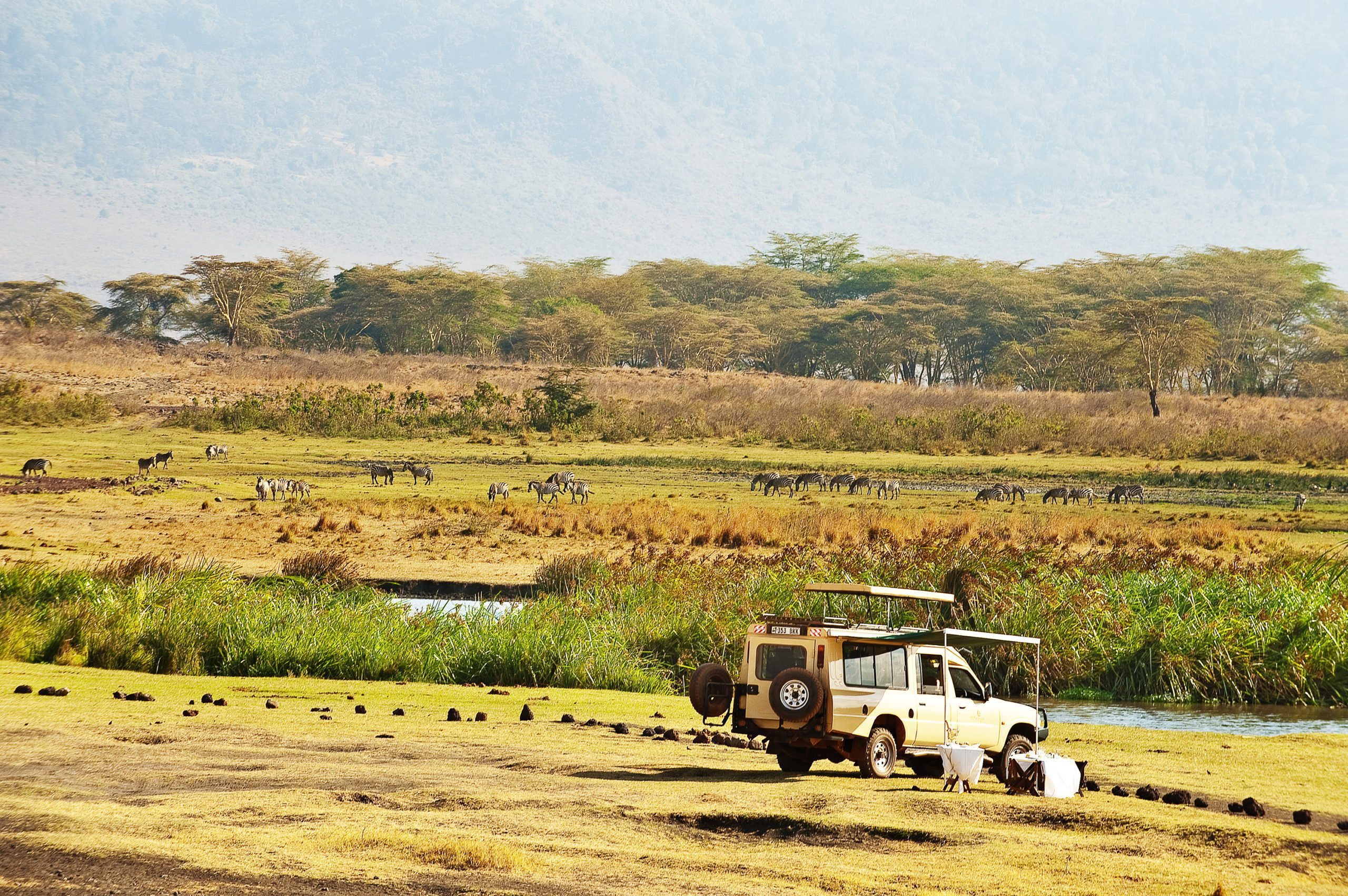 picnic lunch by a safari vehicle on the crater floor near a small lake with wildlife and trees in the background