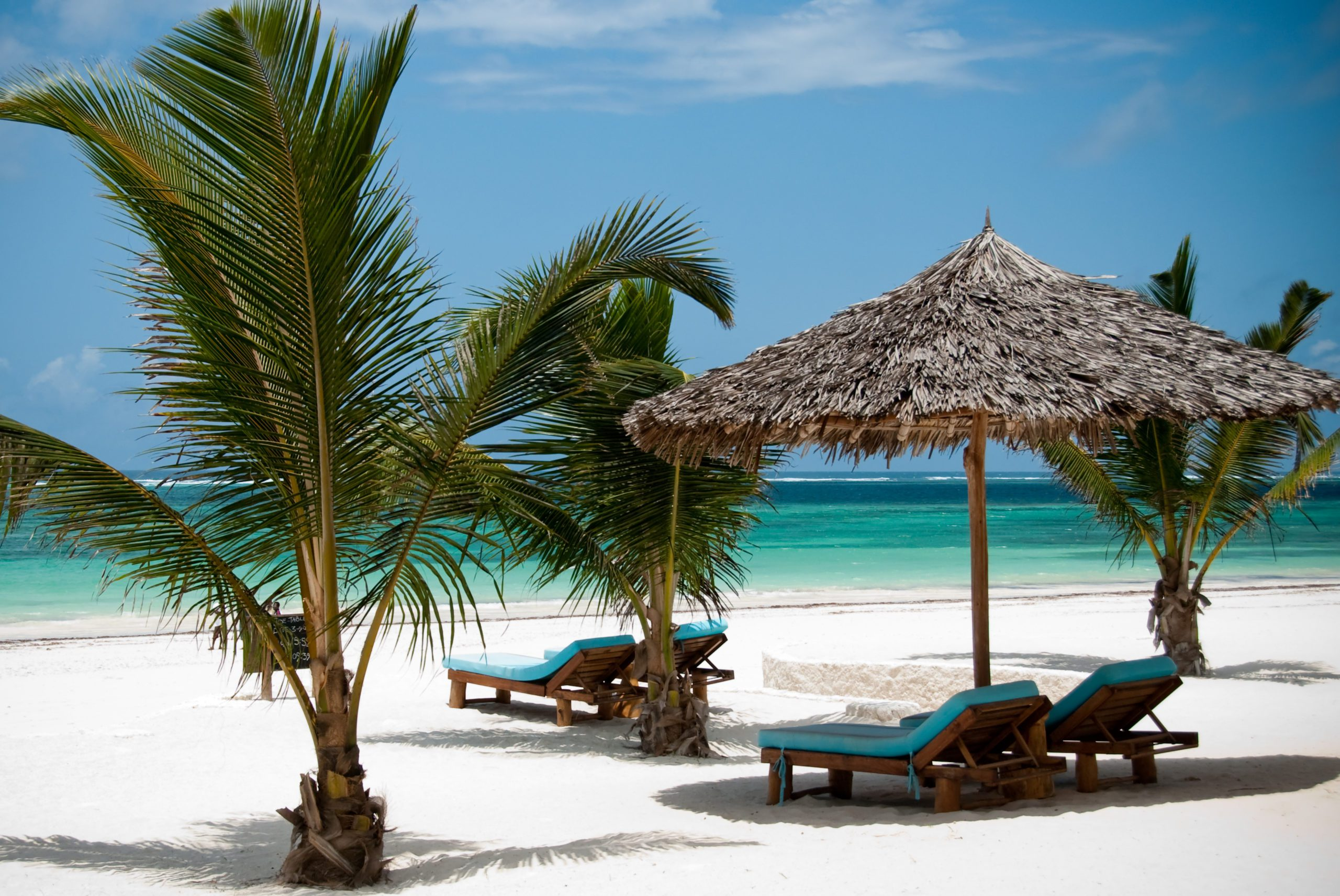 white sandy beaches with loungers, palm umbrellas and palm trees