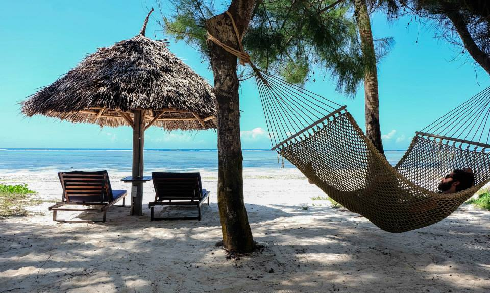 visit kenya and relax in a hammock hanging between palm trees on the white sand beach in zanzibar