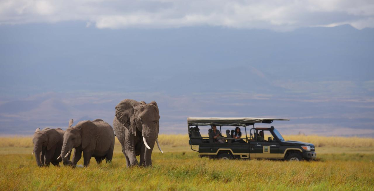 game drive vehicle from Tortilis stopped to admire the three elephants with blueish mountains in the background