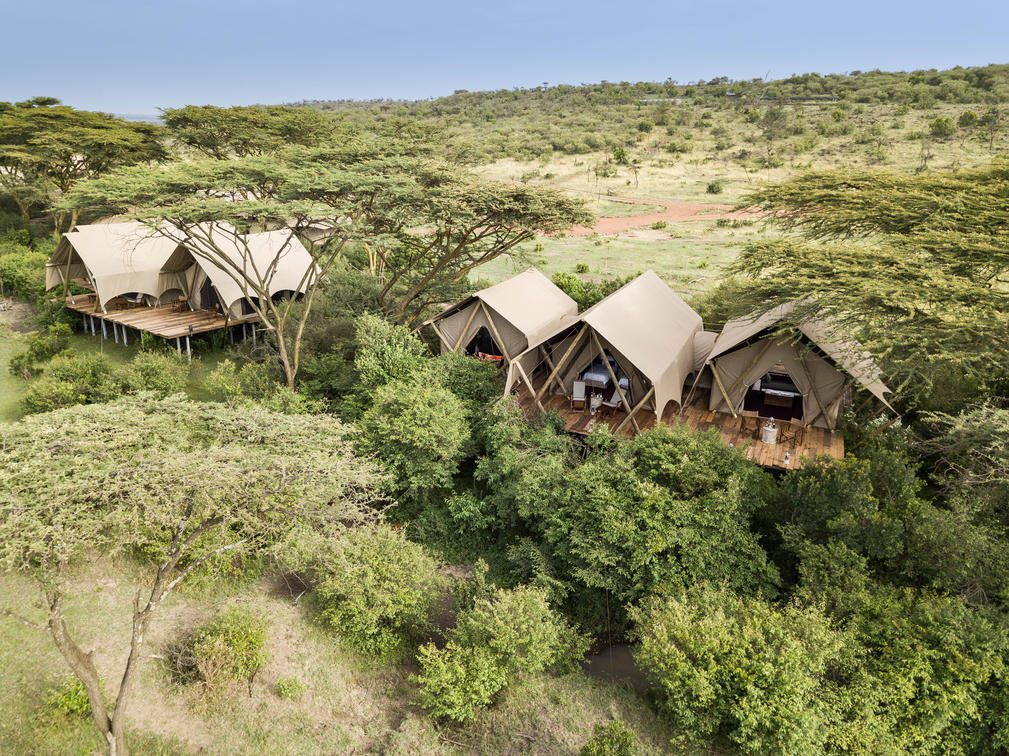 tents in a row amongst green trees on Pan-African safari