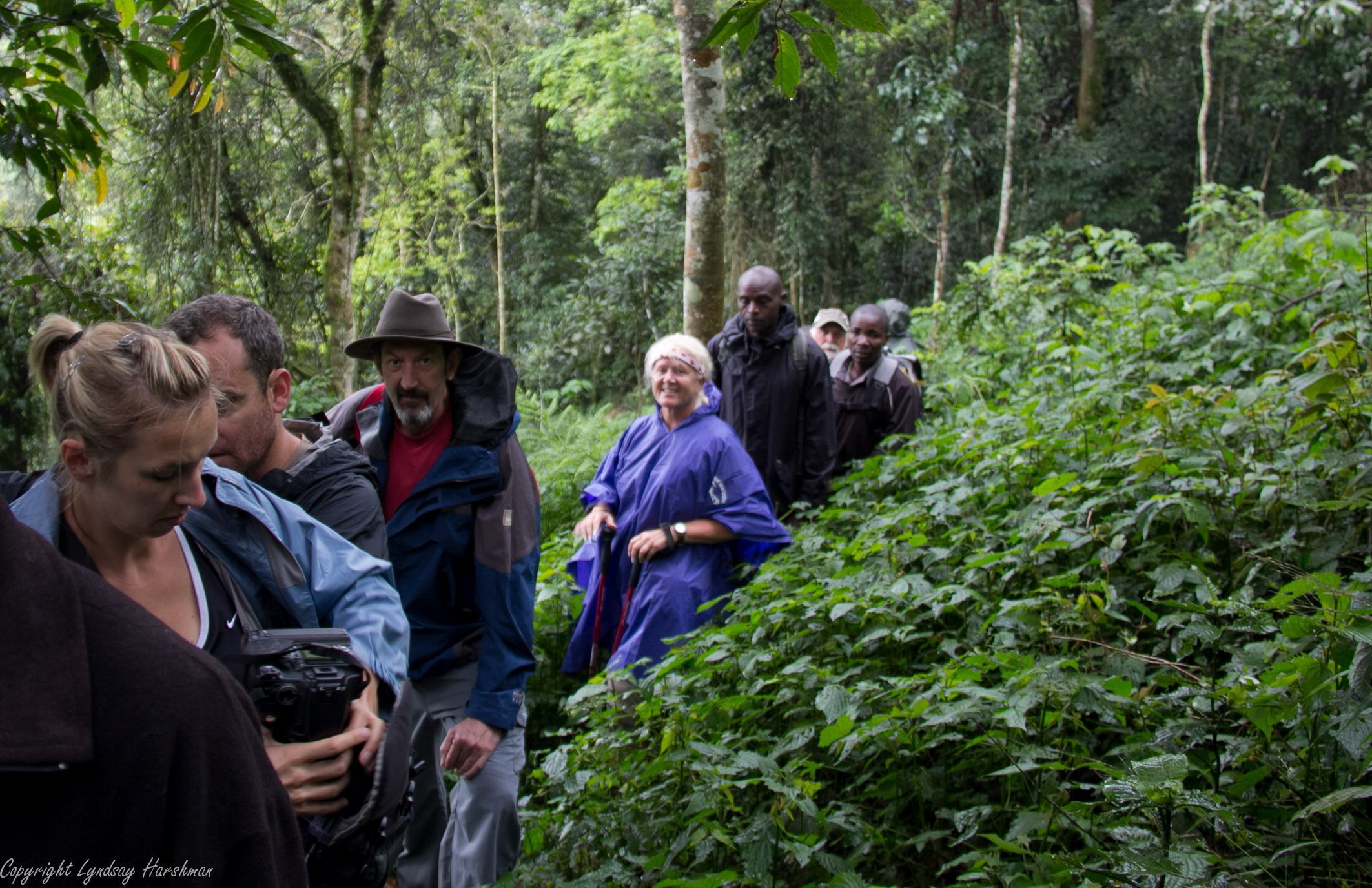 people walking on a trail through the forest in Bwindi.