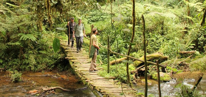 three people on a bridge over a stream in Uganda