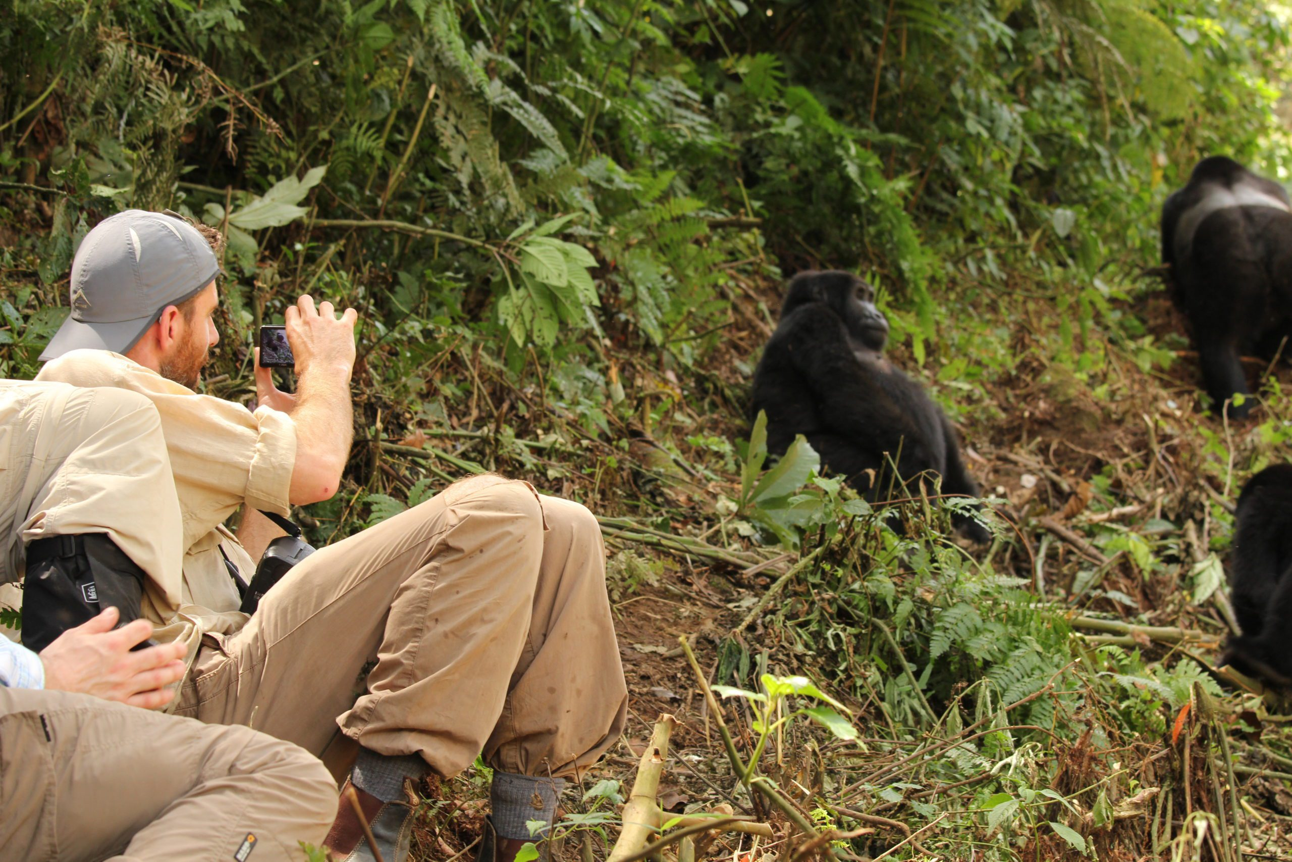two people sitting against a hill taking a photo of a gorilla on our best Uganda safari