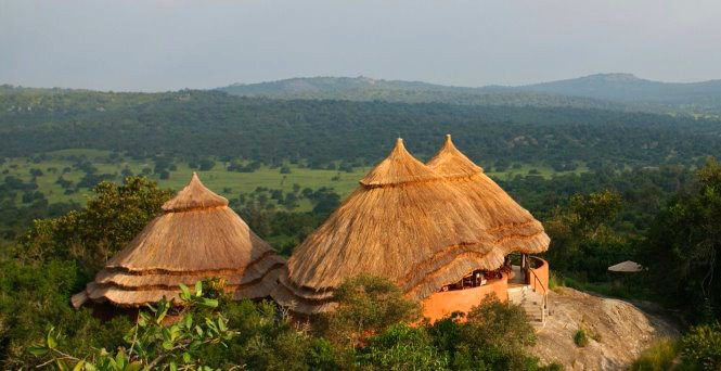 thatched roofs of three rondavel suites at Mihingo Lodge overlooking the countryside of Lake Mburo