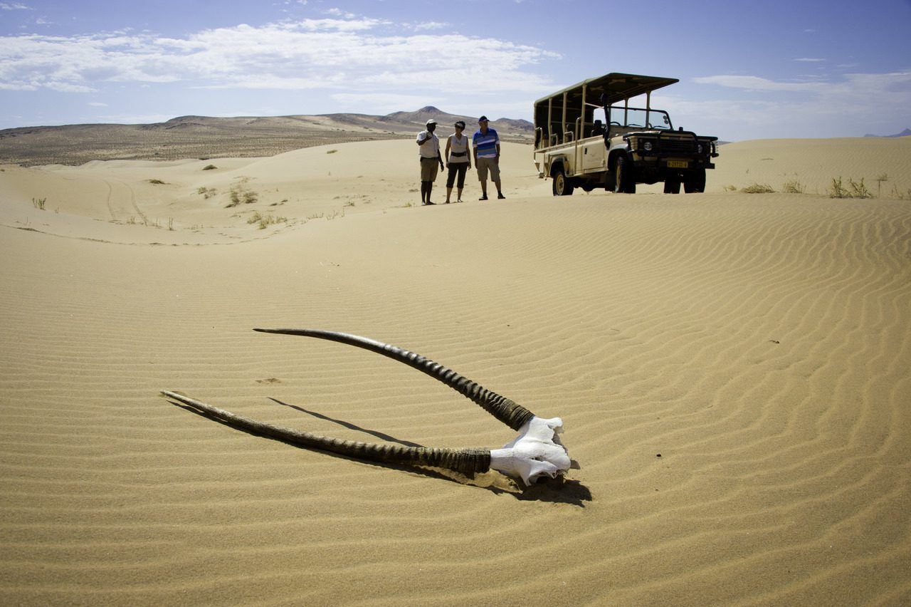 Oryx horns in desert with namibia safari guests in background at Serra Cafema