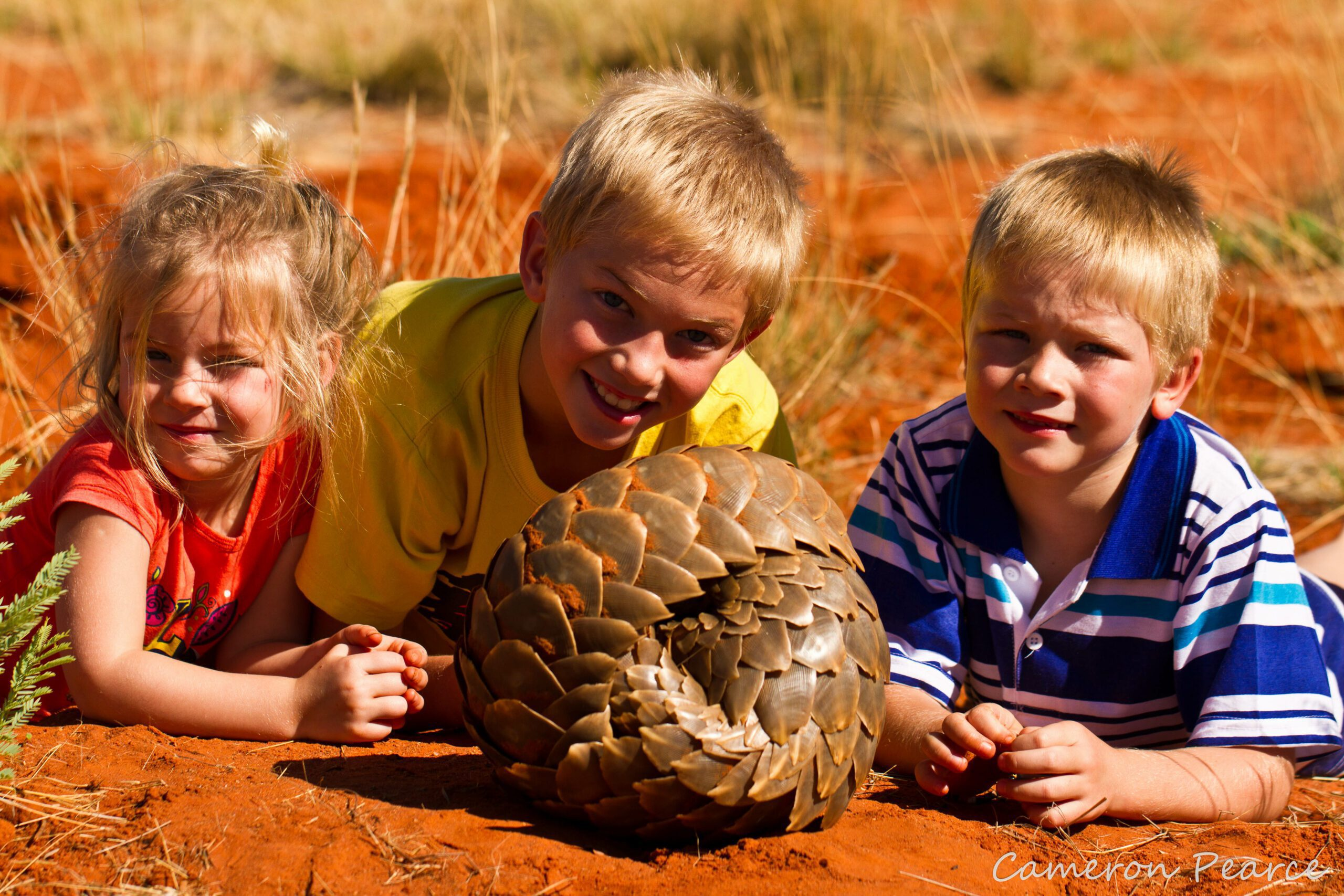 three young kids lay on the red clay while looking and posing at a pangolin at tswalu