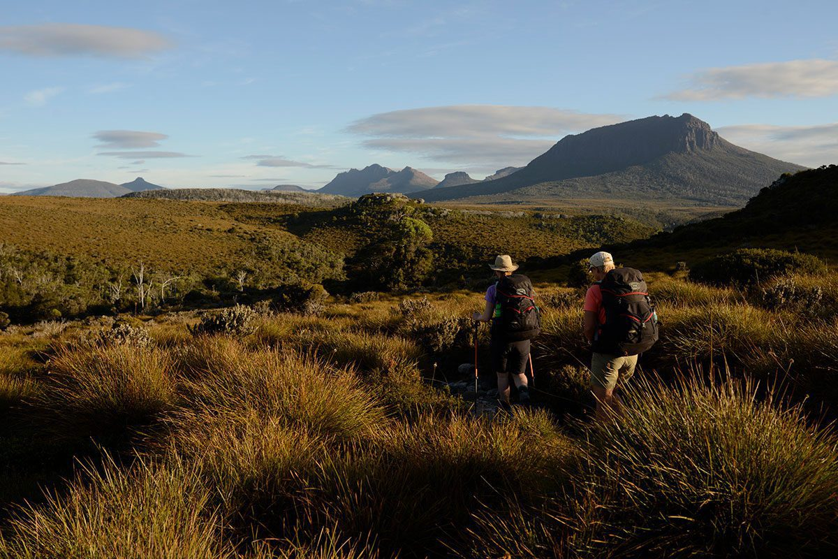 Hikers on the Overland Track