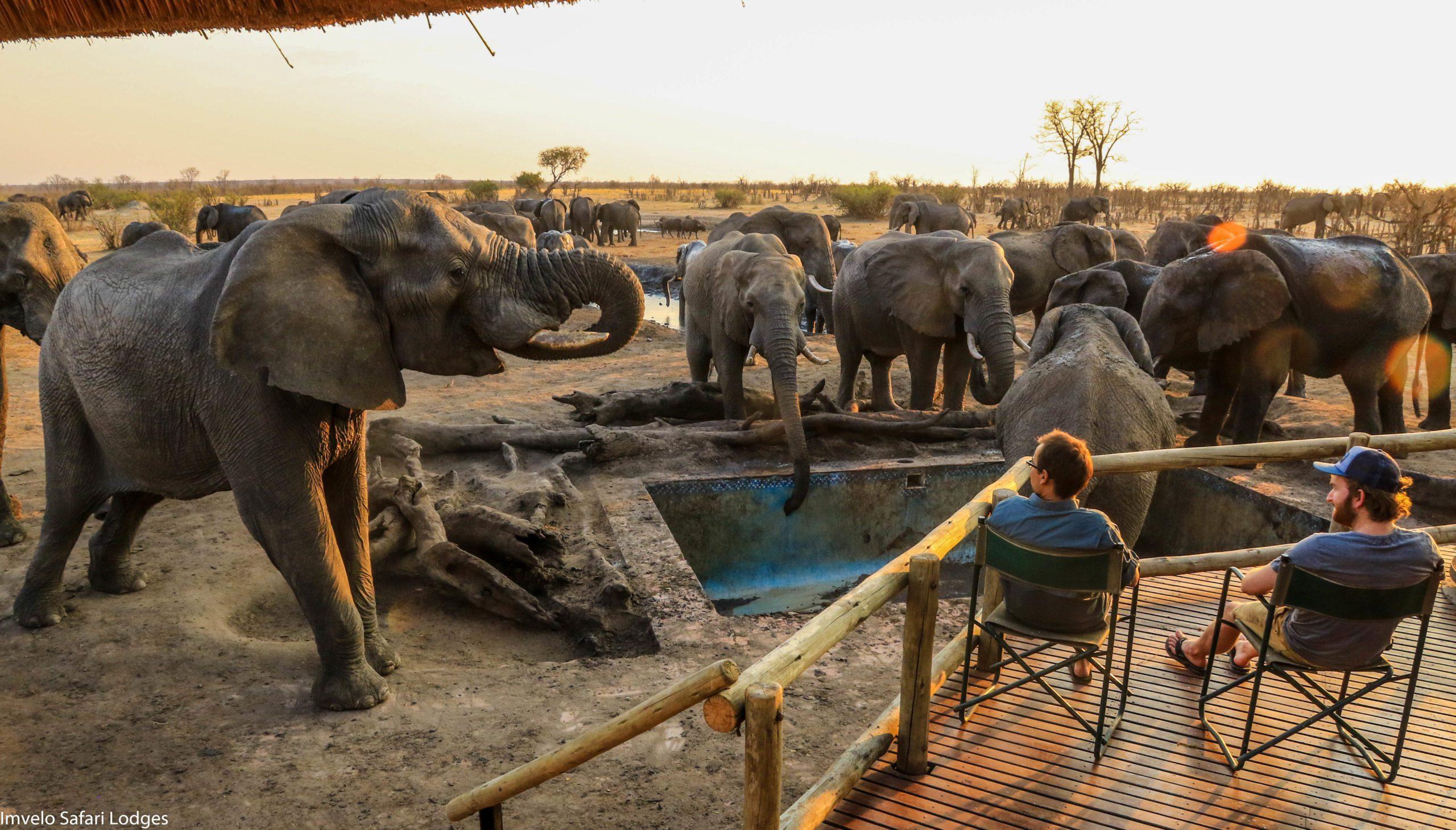 Nehimba Lodge on this Southern Africa family safari
