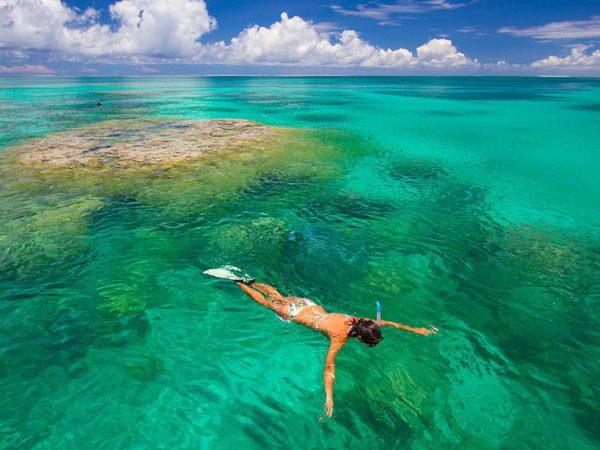 Alphonse Island, Seychelles snorkeling on safari