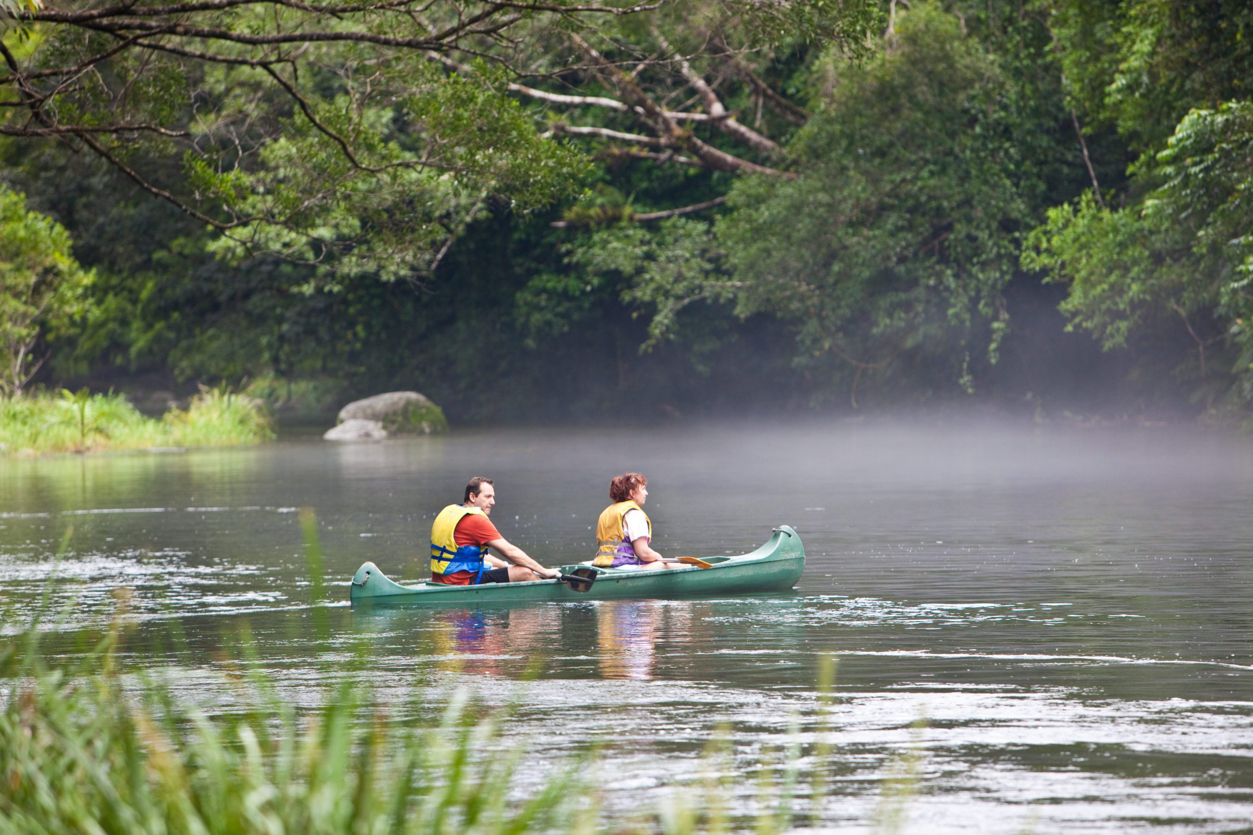 Kayaking through the misty Daintree Forest from Silky Oaks
