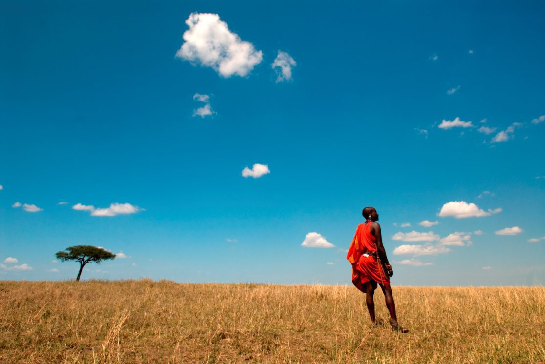 lone maasai standing in dry grass with a single acacia tree and blue sky