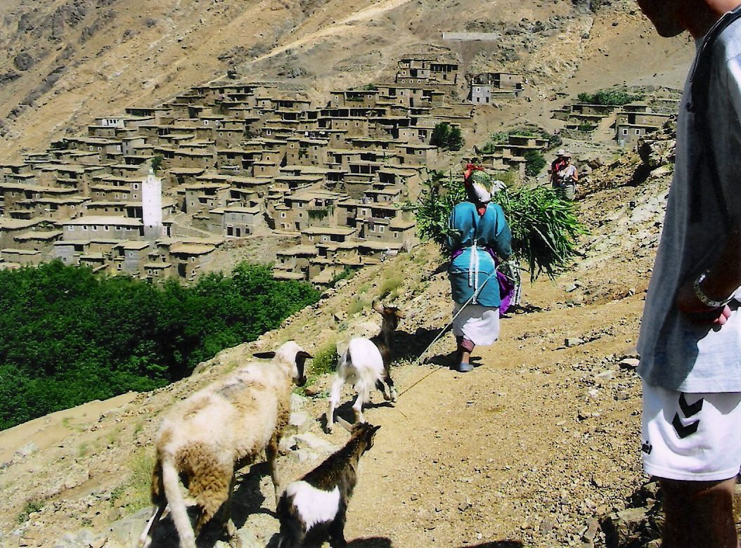 Hiking in the Atlas Mountains, local woman and goats on a hill