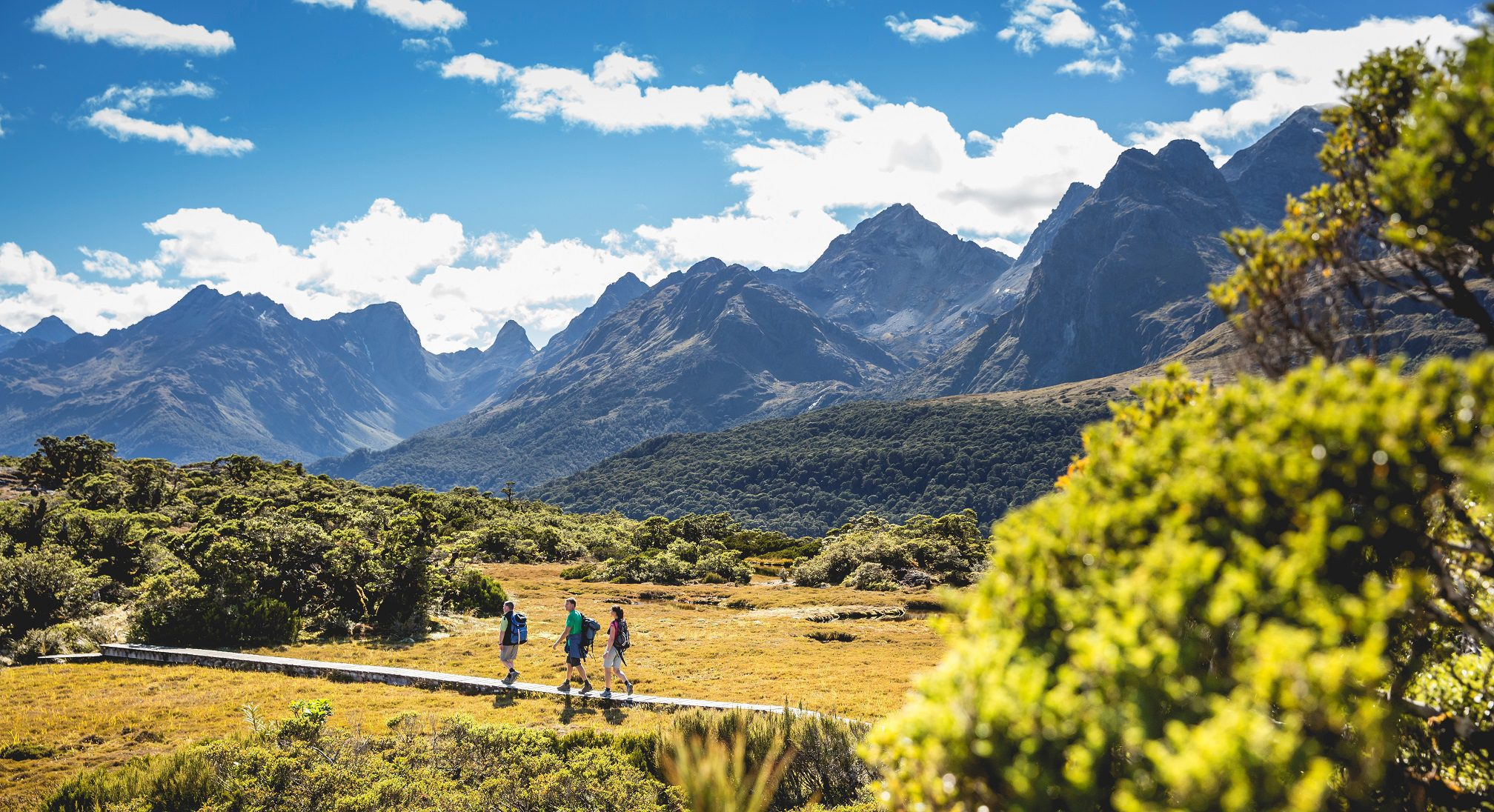 Hikers on New Zealand safari walk along the Routeburn Track with mountains in the background, taken by Fiordland Lodge