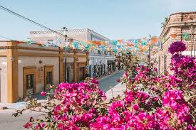 flowers and flags in the town of Todos Santos seen on safari in Mexico
