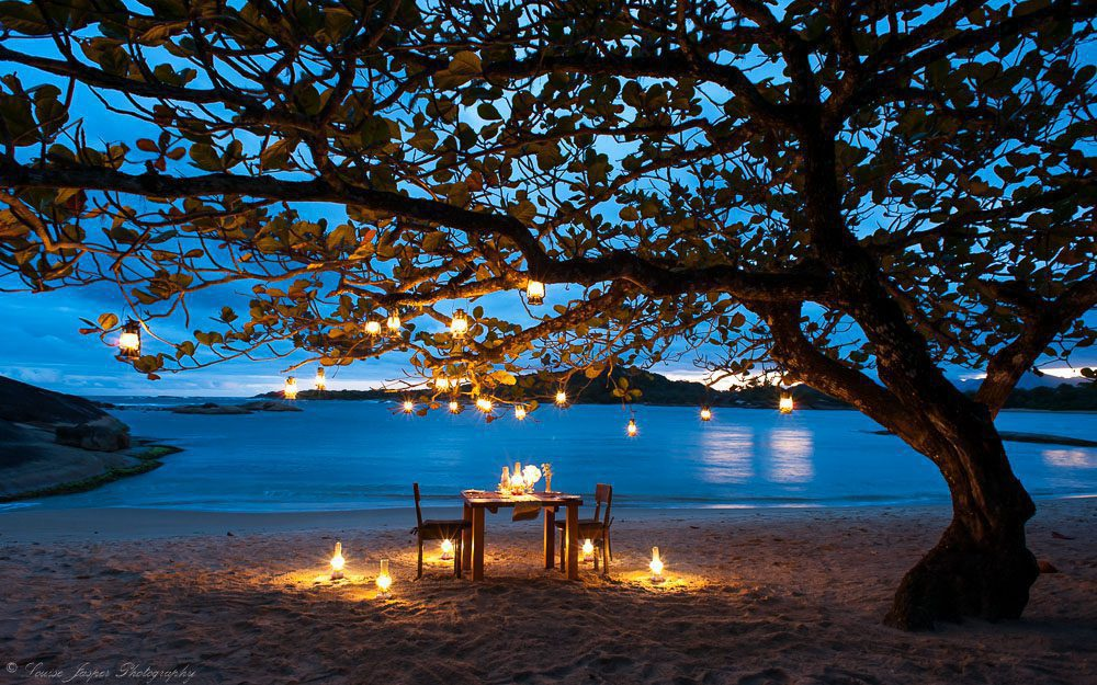 candle lit table under a tree at night next to water