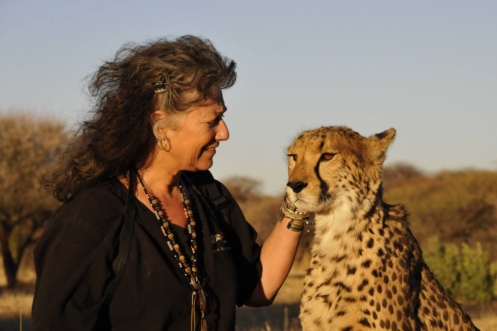 Laurie Marker with cheetah at Cheetah Conservation Fund (CCF)