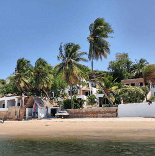 colorful buildings along the beach fringed by palm trees