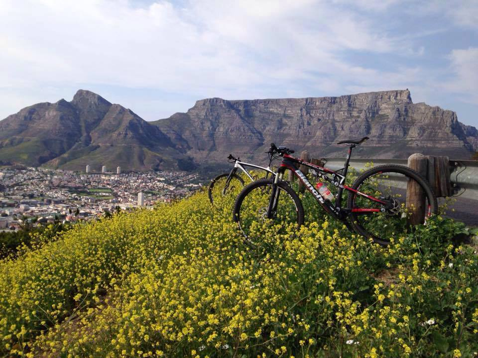 bike in a field of yellow flowers with table mountain and cape town in the background