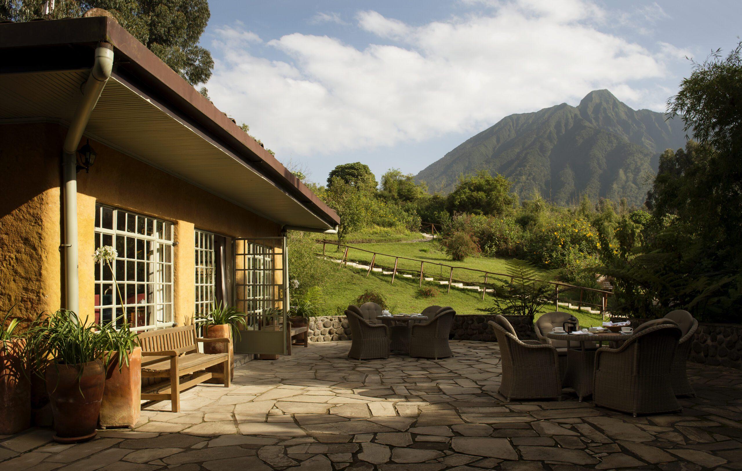 on Rwanda safari yellow cottage at sabyinyo silverback positioned to look at the mountains