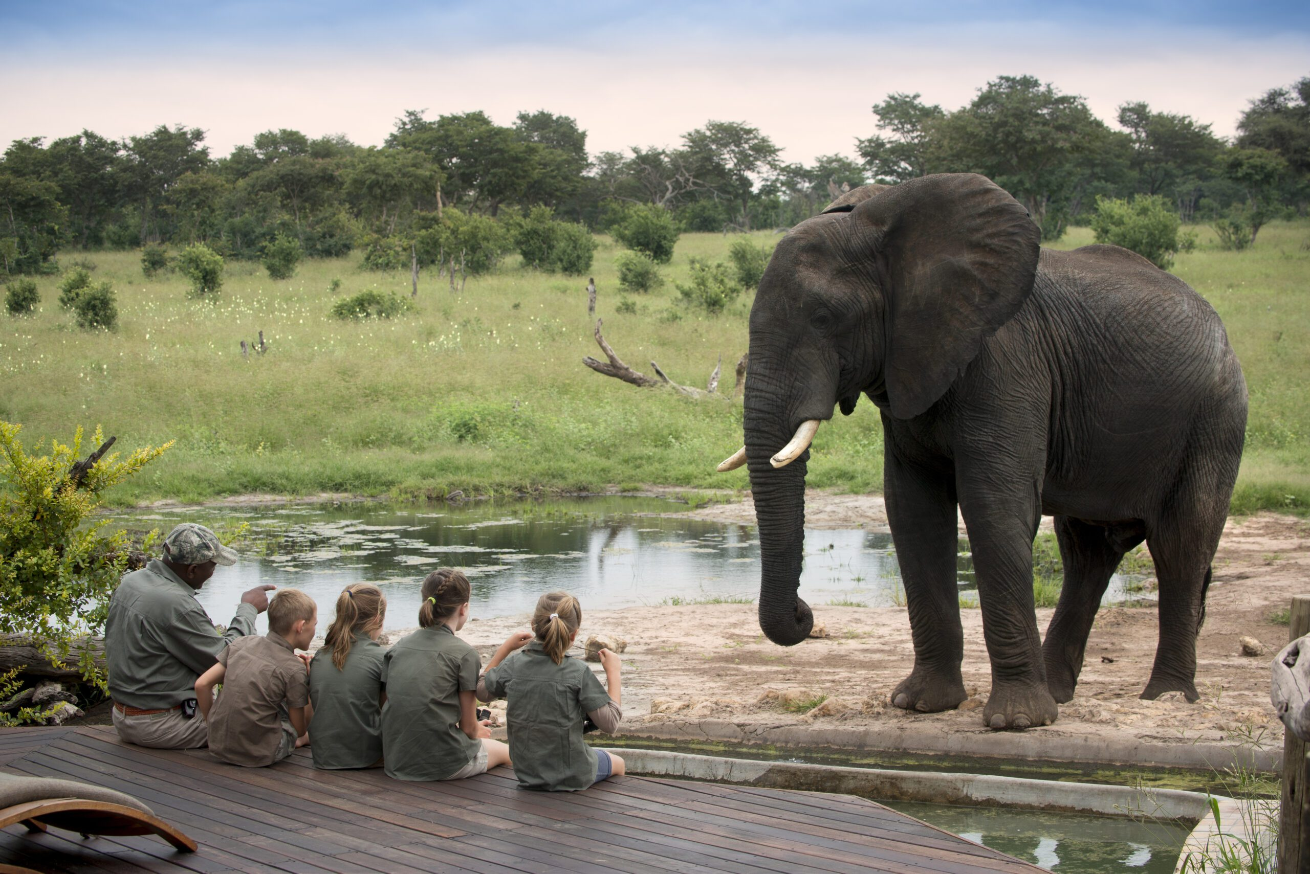 elephant at a camp waterhole with guide and children watching