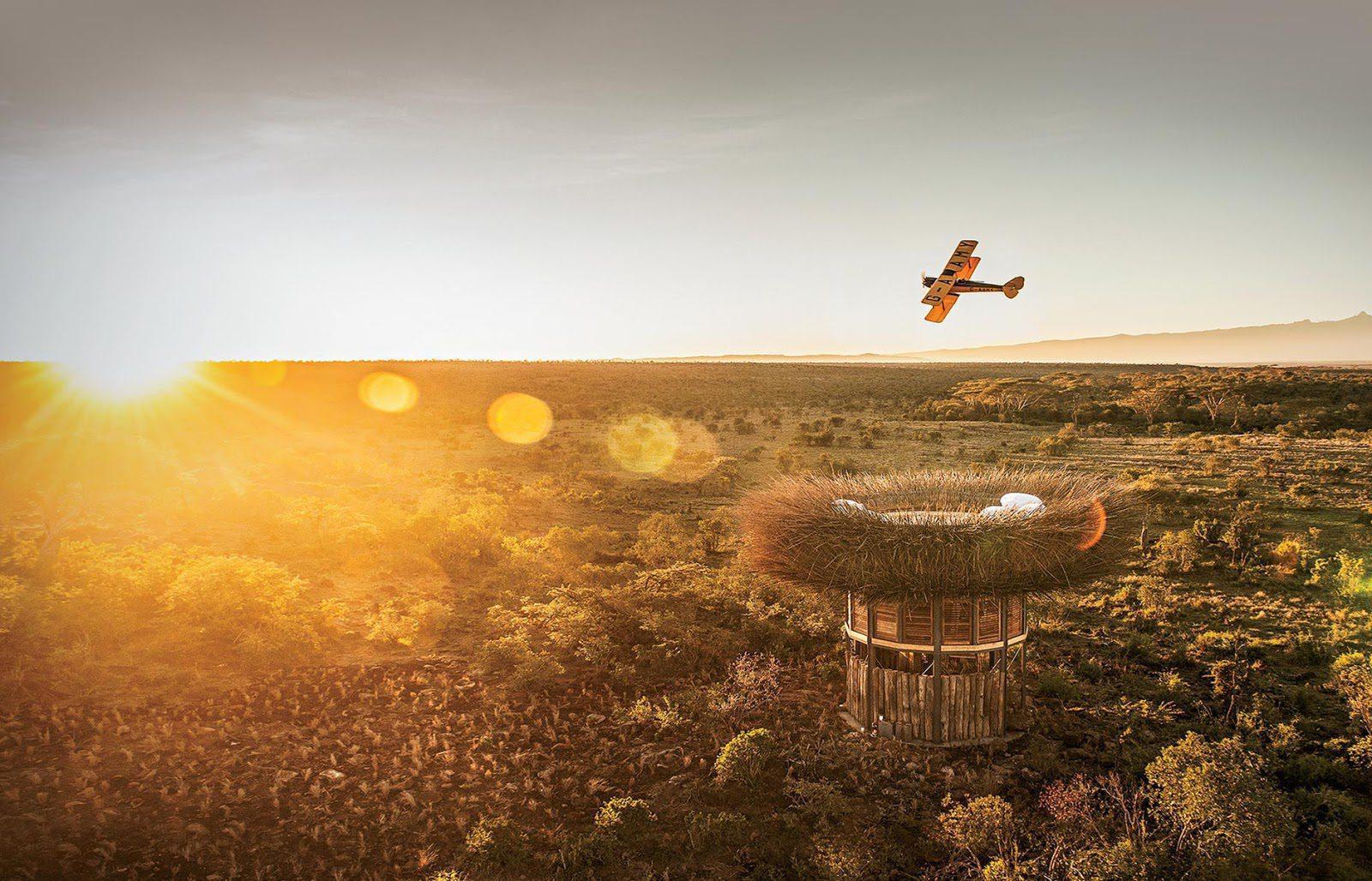 segera's nest on biplane safari flying overhead at sunset