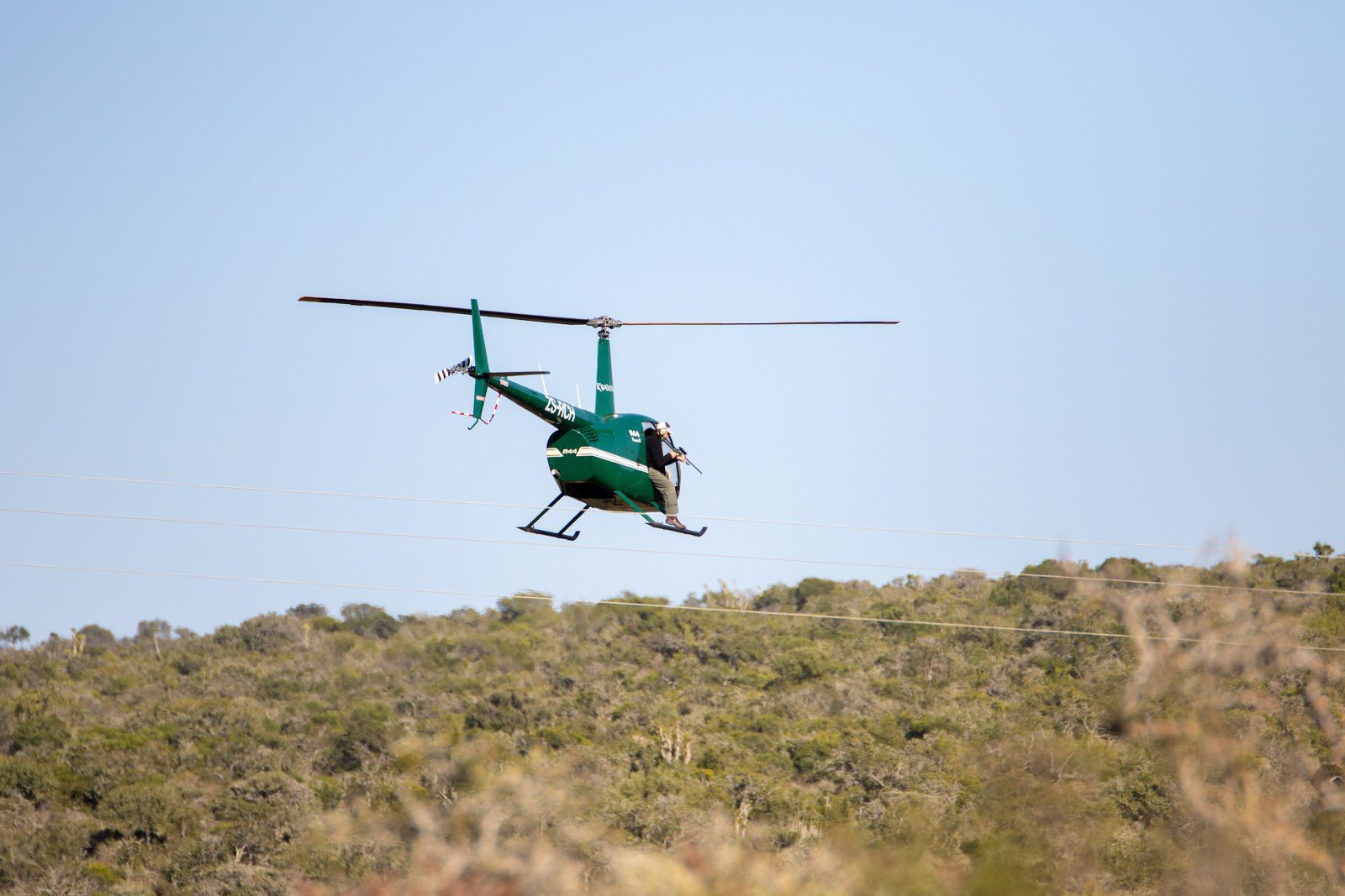 helicopter rhino darting kwandwe