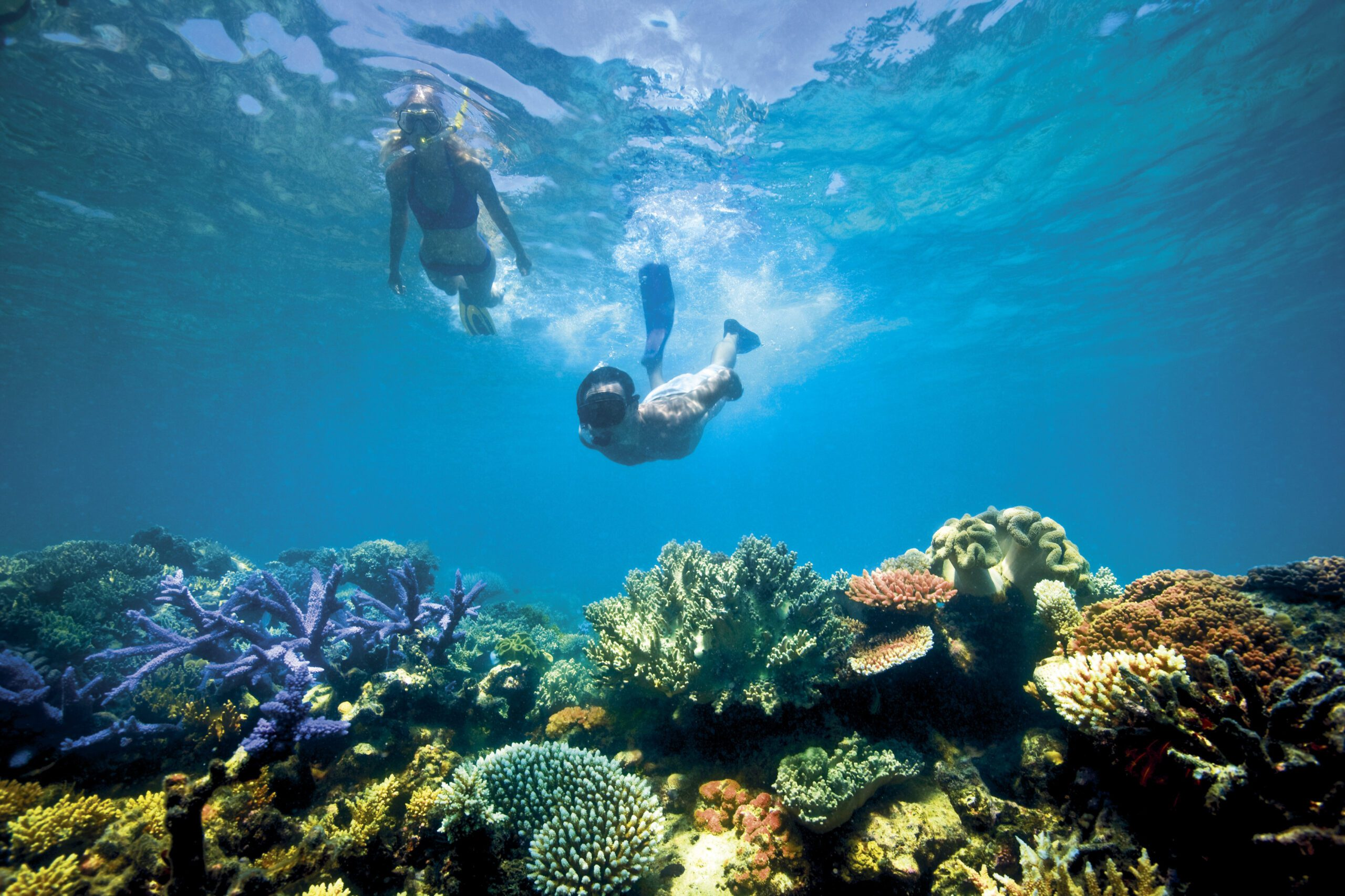 two people snorkeling in africa