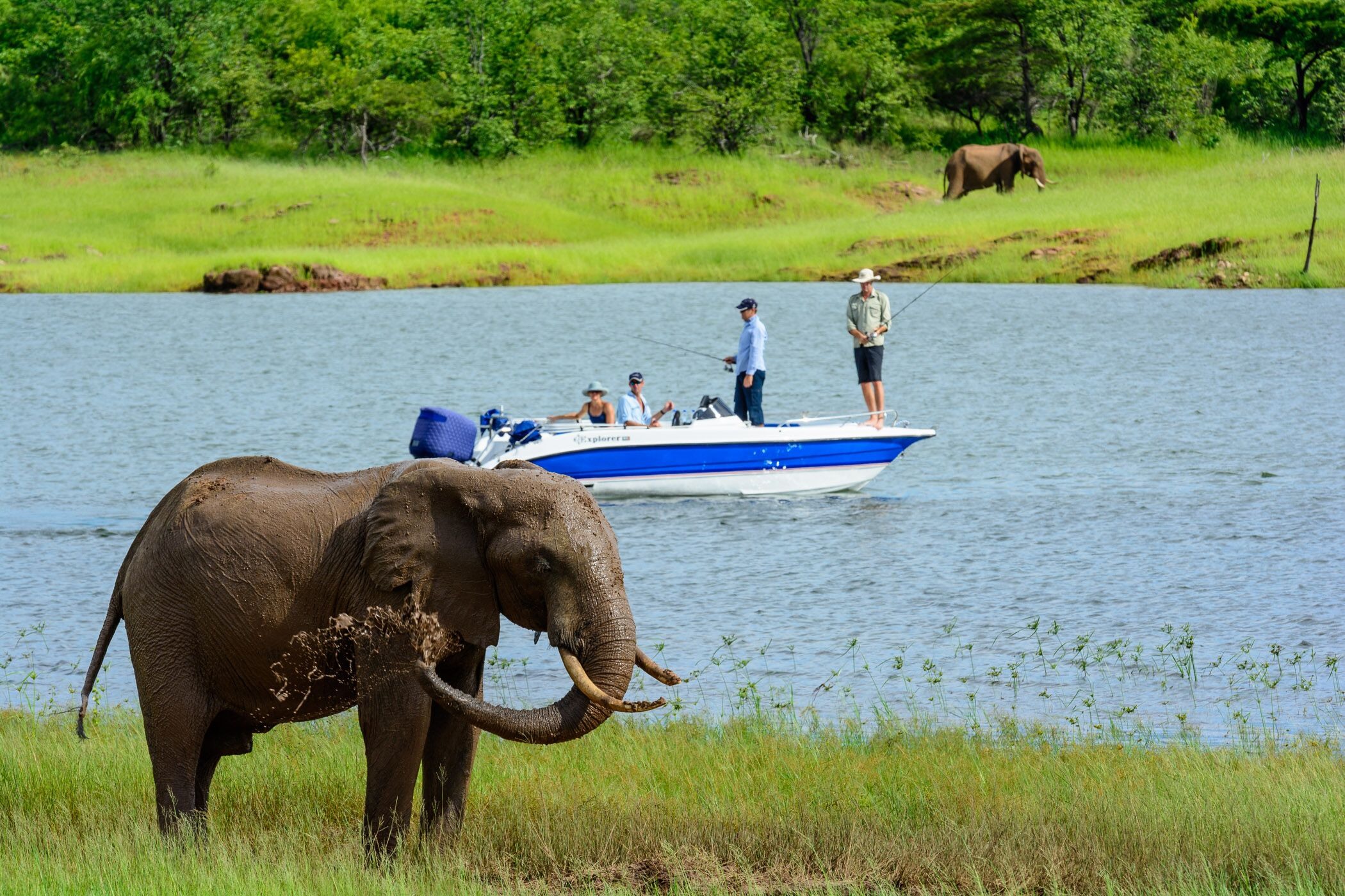boat of fisherman with elephant on bank fishing in Africa