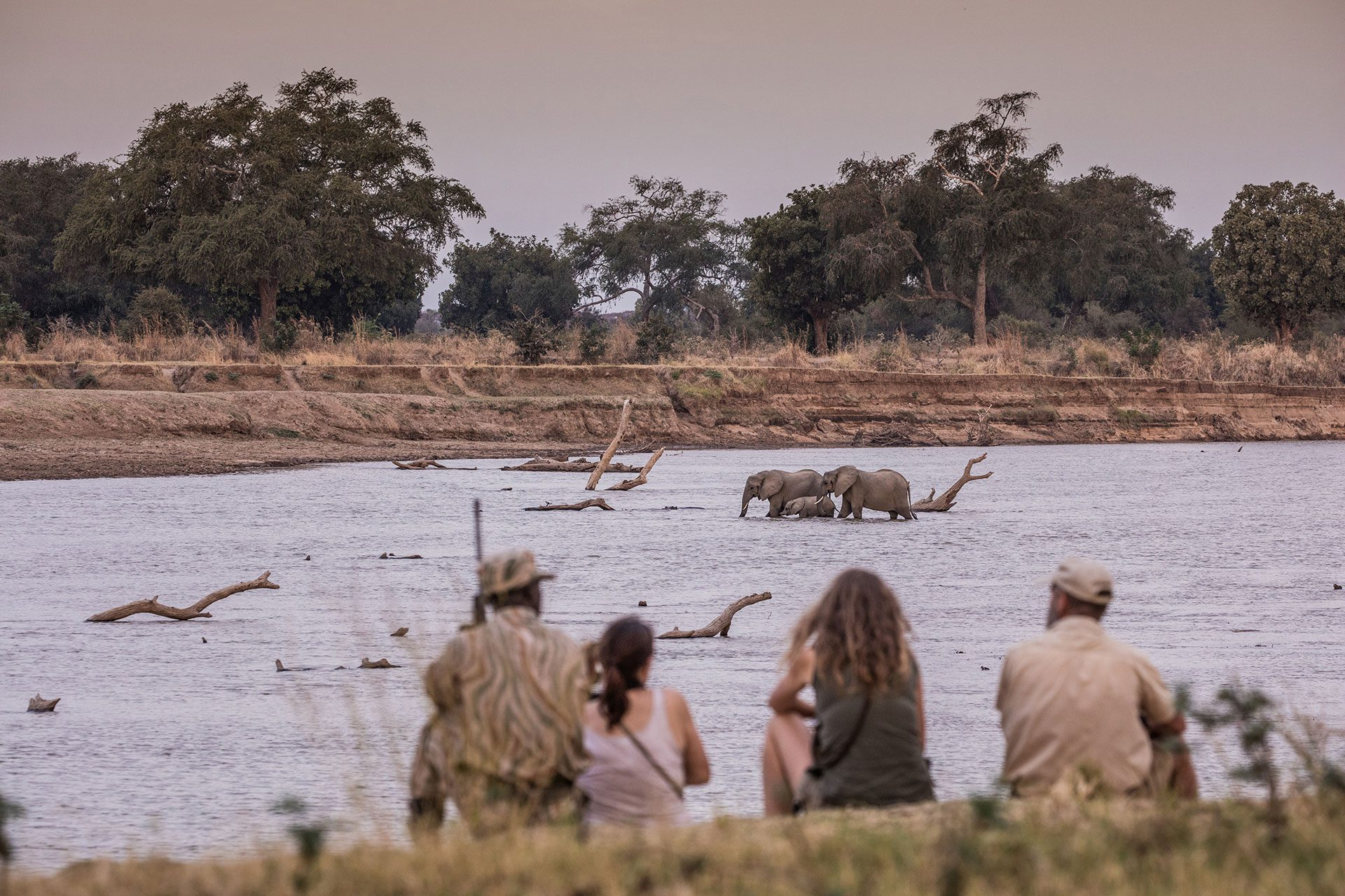 guests watching elephant in river
