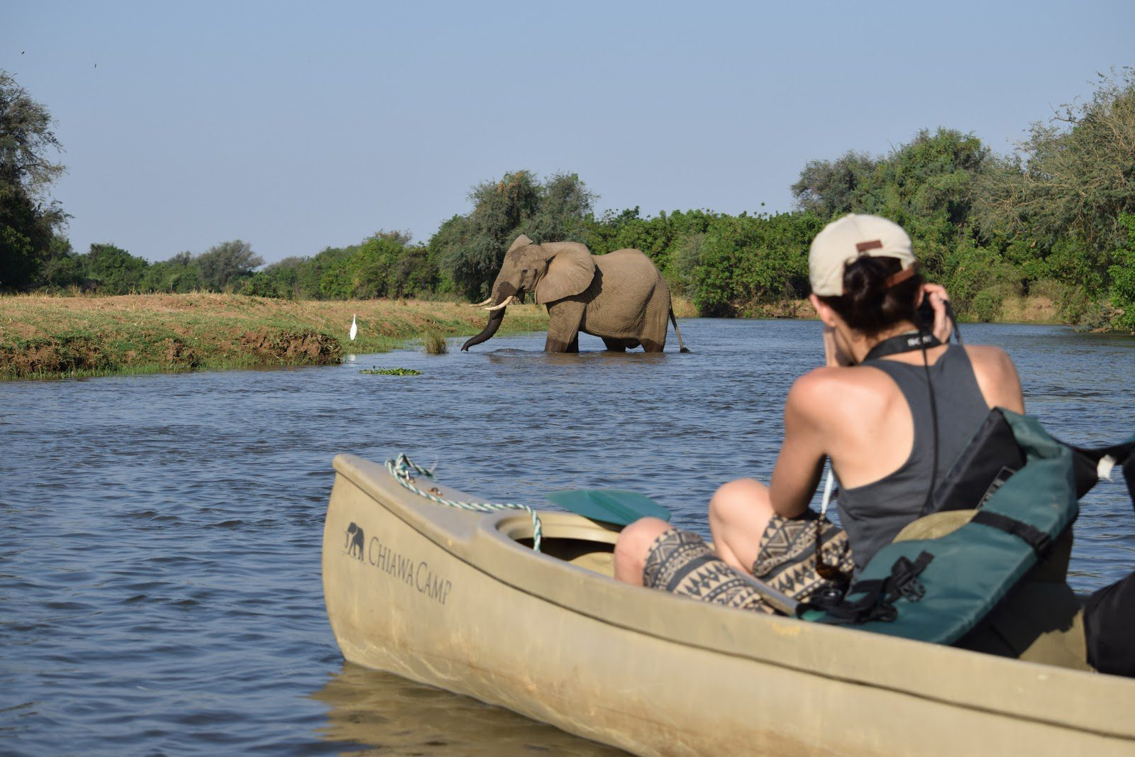 woman sitting in a canoe photographing an elephant wading through the water