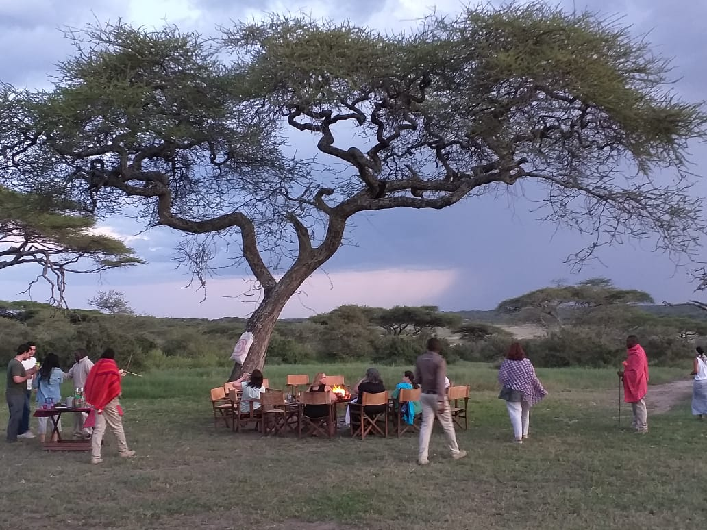 a group of safari goers stopping for a bush lunch under an acacia tree in the ngorongoro crater on our northern Tanzania safari