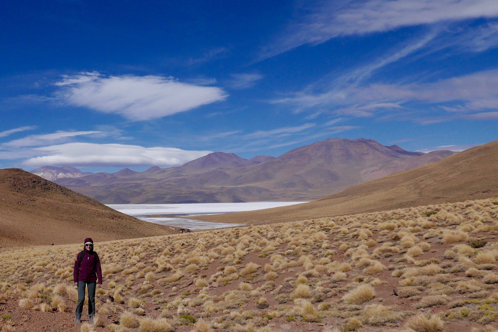 A woman in a purple jacket hiking rolling hills with salt pans in the background in the Atacama Desert