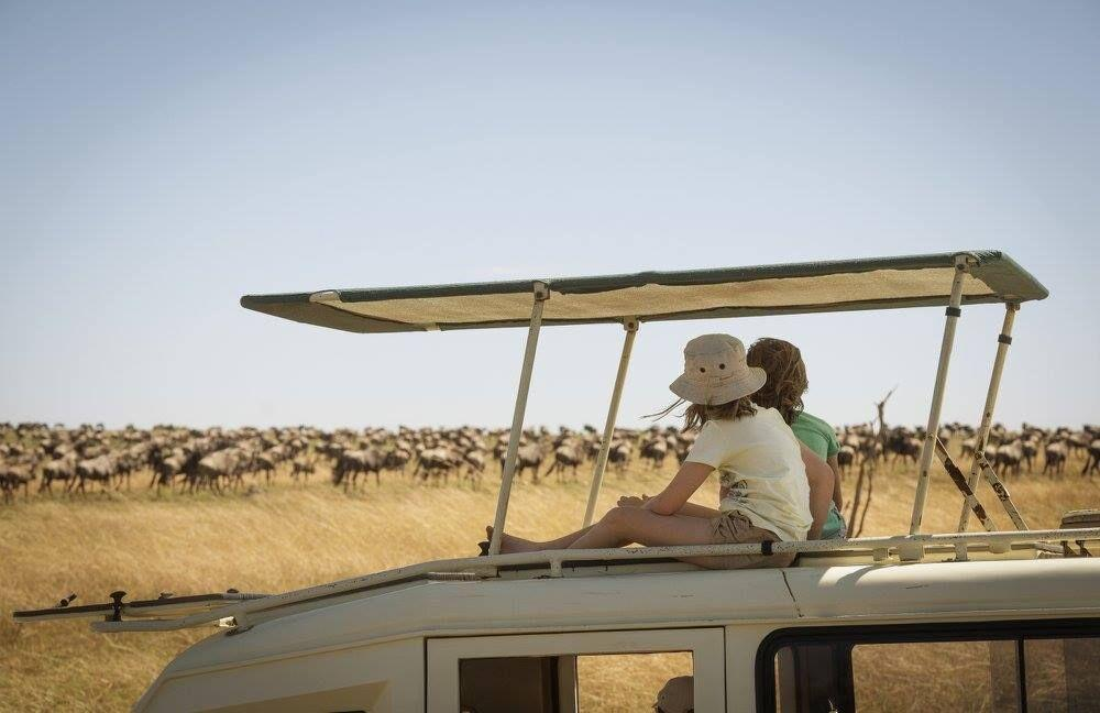 two young girls watch a herd while sitting on top of a safari vehicle on a wildebeest migration safari