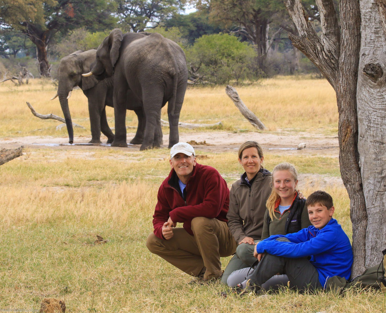 family walking safari poses with elephants