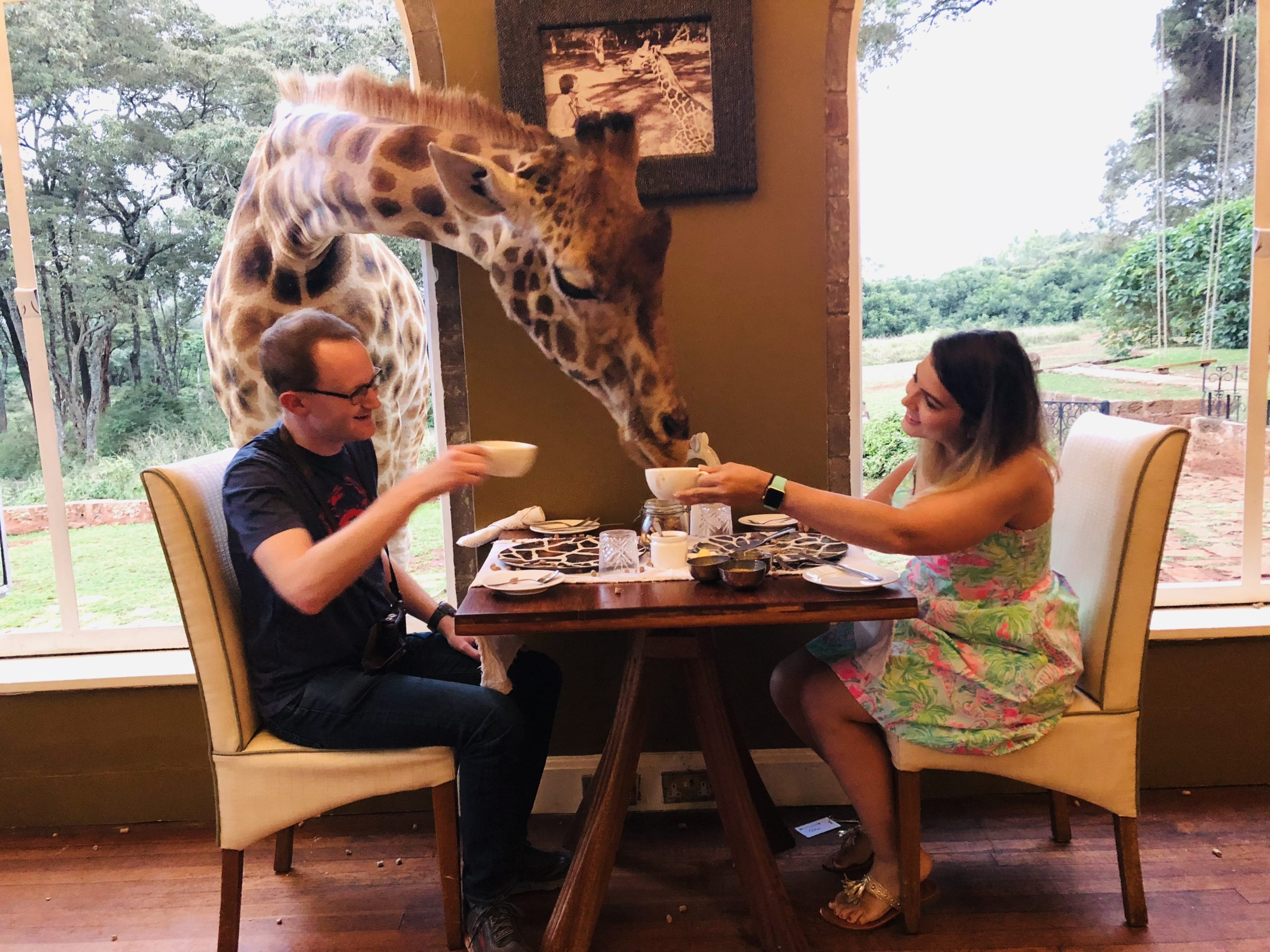 two people enjoying coffee at a breakfast table with a giraffe popping its head through the window on the premier Kenya safari