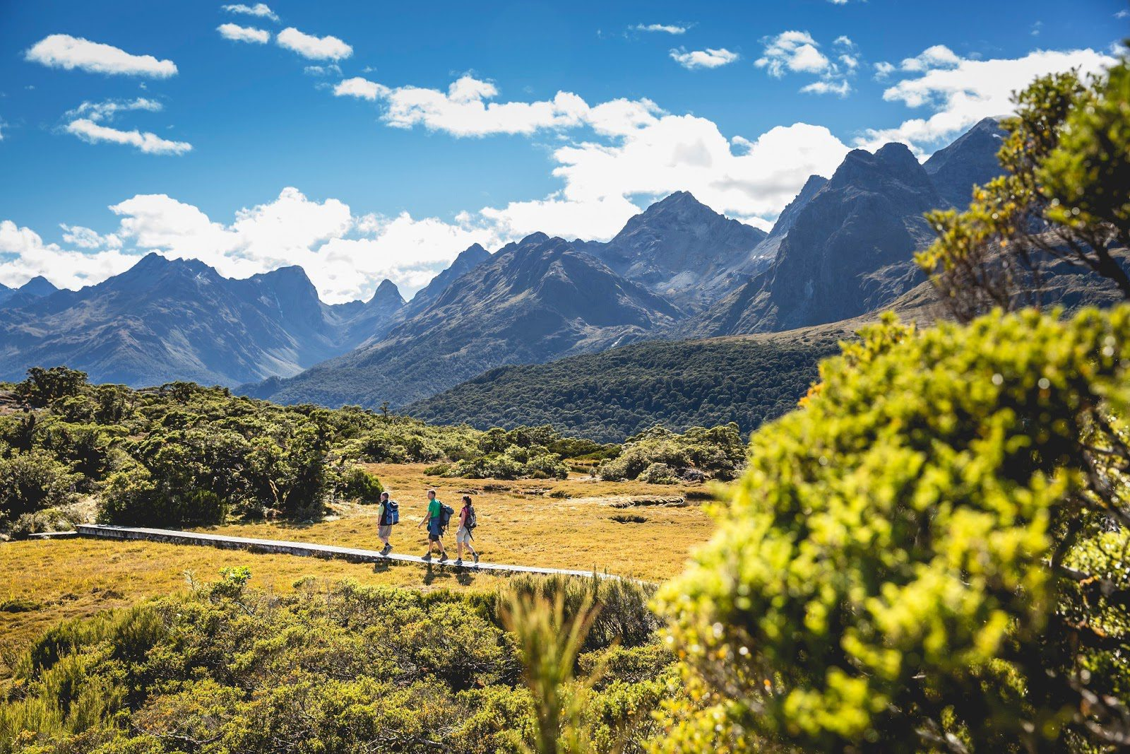 three hikers on a luxury walk traverse a wooden path near the South Island's Main Divide with jagged peaks in the distance