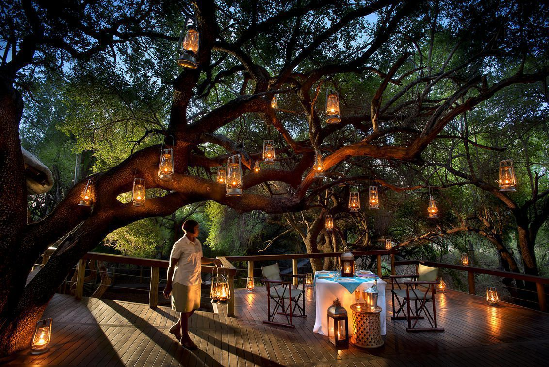 the best South Africa safari offers lanterns hung in a tree over a candle lit table set for dinner